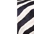 Bianco/Zebra